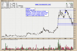 MXI.V Merrex Gold Hitting Support