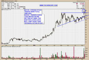 BTN - Ballantyne Strong Bull Trap Technical Analysis Price Chart Triangle Pattern
