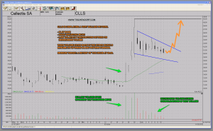 CLLS Cellectis Bullish Flag Set-Up Technical Analysis Chart Pattern Biotech Cancer Car T-Cells